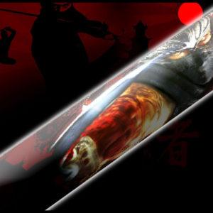 Japan Ninja Warrior